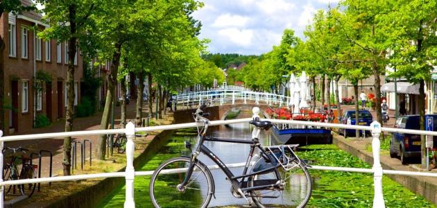 Delft-78736